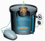 Example of DWC (Bubbler) System