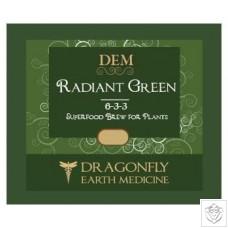Radiant Green Dragonfly Earth Medicine