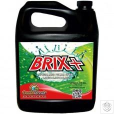 Brix+ Green Planet