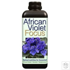 African Violet Focus Growth Technology