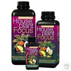 Houseplant Focus Growth Technology