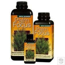 Palm Focus Growth Technology
