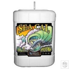 Sea Cal Humboldt