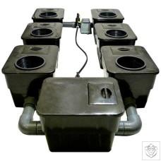 6 Pot UnderFlow DWC System