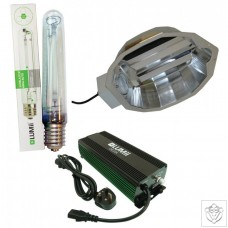 600W DIGITA & FOCUS Reflector System With Lamp LUMii