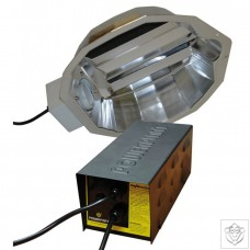 250W DayLite FOCUS System Without Lamp Powerplant