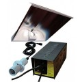 250W DayLite SuperWing System Without Lamp Powerplant