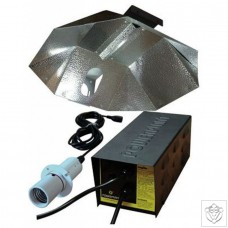 250W DayLite UltraLite System Without Lamp