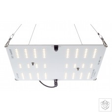 HLG 65W V2 LED Grow Light