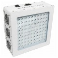 PhytoMAX-2 200 LED Grow Light Black Dog LED
