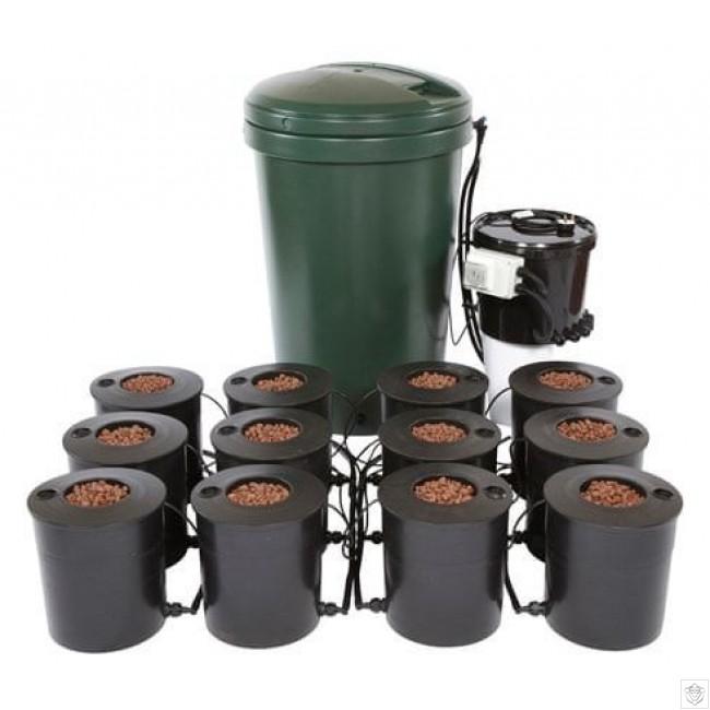 12 Pot IWS DWC System