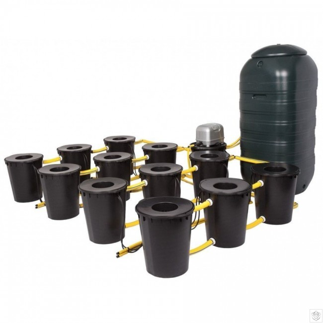 Dwc 12 Potz System With 250l Tank