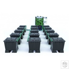 ALIEN RAIN 15 Pot 30L Black Series