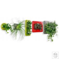 Flowerbox Ceramic FlowerBox