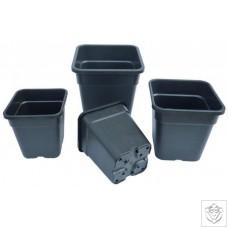 Premium Square Pots N/A