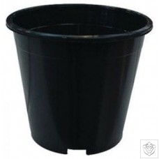 Large Round Pots - Ideal for Pot Culture and Drip Systems N/A