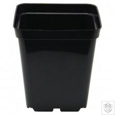Square Pot 10cm (11cm depth) (0.7L) N/A