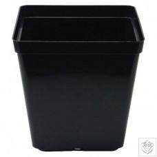 Square Pot 13cm (13cm depth) (1.5L) N/A