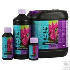 Blossom Builder Liquid Atami / B'Cuzz