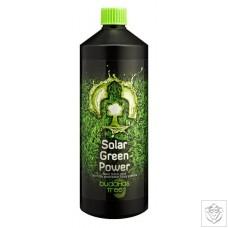 Solar Green Power Budhhas Tree