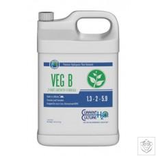 Veg B Current Culture H2O