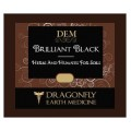 Brilliant Black Dragonfly Earth Medicine