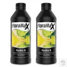 FloraMax Hydro A&B FloraMax