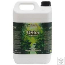 Urtica - Liquid Nettle Brew