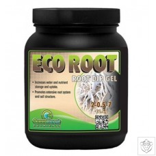 Eco Root Green Planet