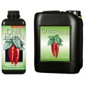Chilli Focus Growth Technology