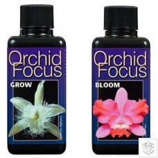 Orchid Focus Grow & Bloom