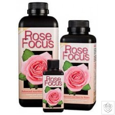 Rose Focus Growth Technology
