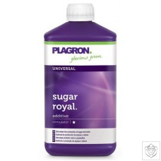 Sugar Royal Plagron
