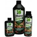 Catalyst Plant Magic
