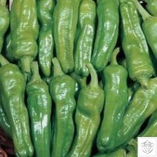 Chili Peppers 1 packet (200 seeds) N/A