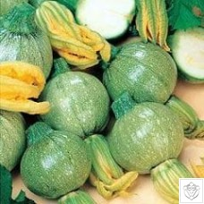 Courgette 1 packet (45 seeds) N/A