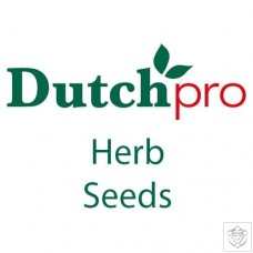 Herb Seeds Dutch Pro