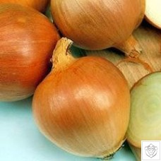 Onion 1 packet (1400 seeds)