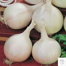 Onion 1 packet (840 seeds)