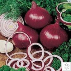 Onion 1 packet (840 seeds) N/A