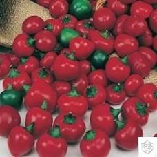 Pepper 1 packet (10 seeds)