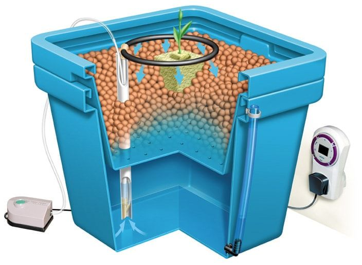How Drip Irrigation Works